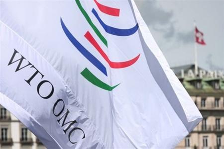 Украина может подать жалобу в ВТО