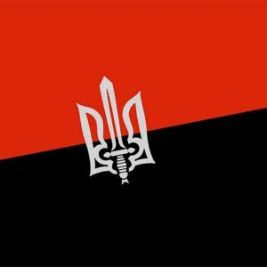 соц. сети-приложения-политика-Правый сектор-Украина-985935