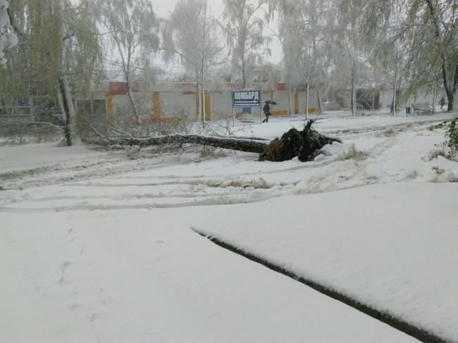 Харьков1