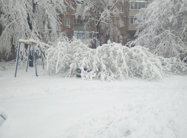 днепр4