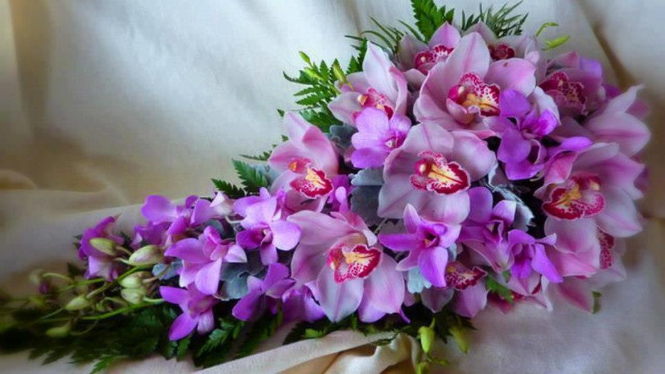 Букеты с днем рождения орхидеи