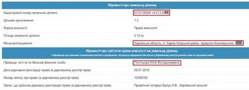 pletnov10-crop-u116298