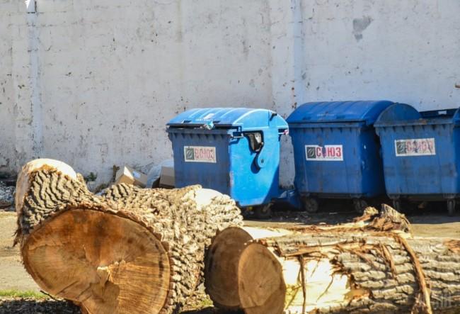 Злоумышленник спокойно выкатил мусорный контейнер с телом и установил его рядом с другими баками
